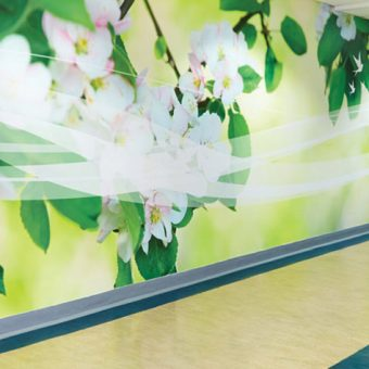 Corridor Wall Mural